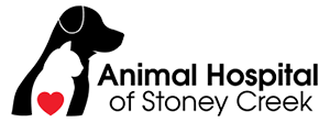 Vet in Hamilton | Animal Hospital of Stoney Creek Logo