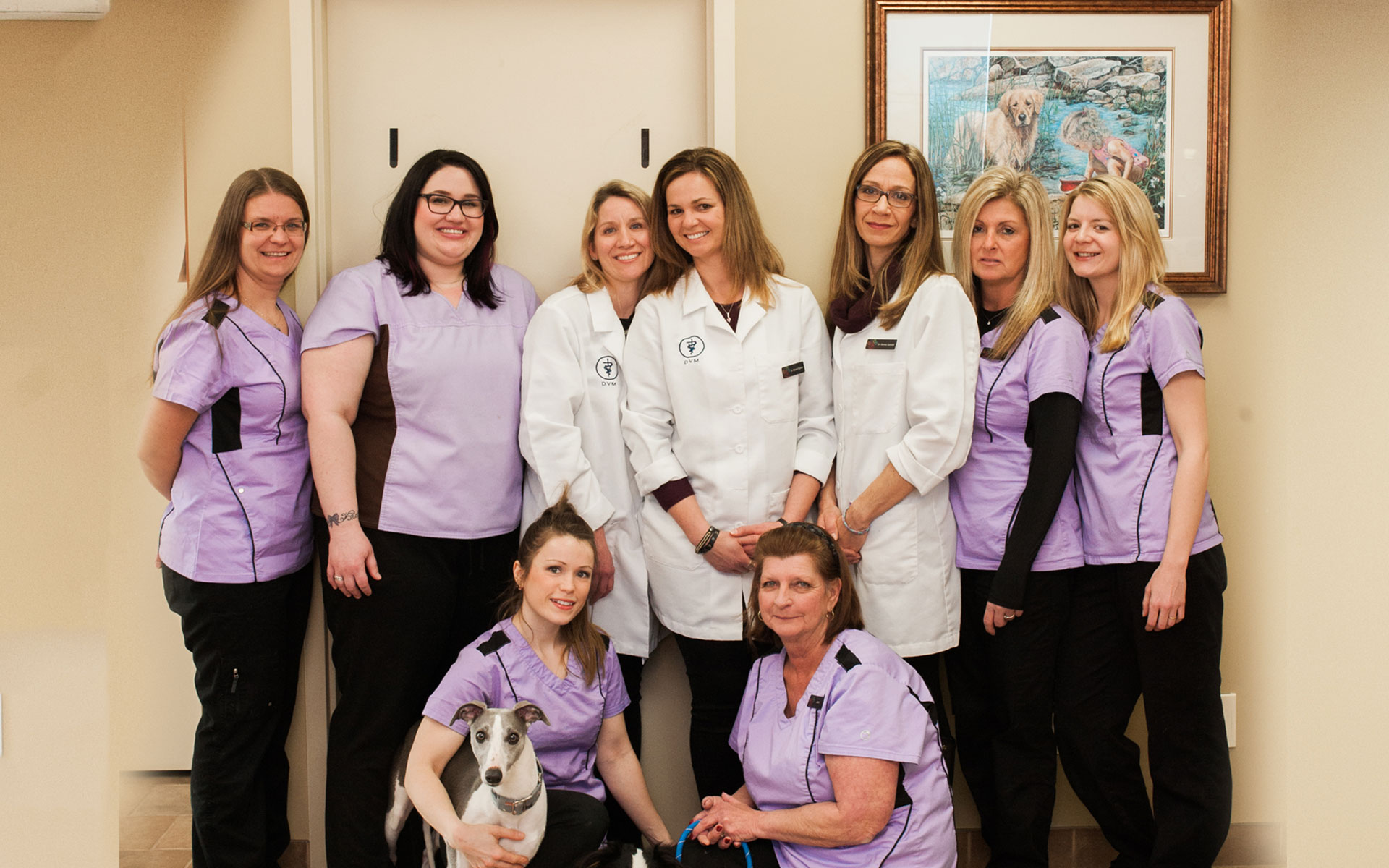 Team picture of Animal Hospital of Stoney Creek