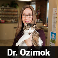 Dr. Ozimok