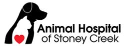 Vet in Hamilton |  Animal Hospital of Stoney Creek Logo